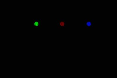 Блесна Огонь 1 см LUM светонакопительная вставка