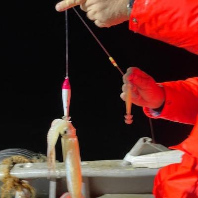 Кальмарница грузовая Point fish 94 гр