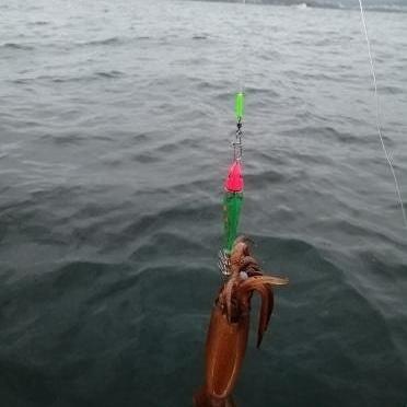 Кальмарница грузовая Green fish 94 гр